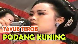 download lagu Podang Kuning Tayub Terob 2017 gratis