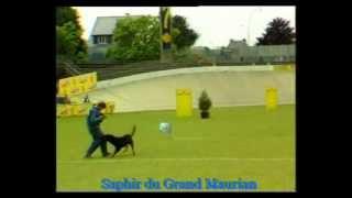 1987 Saphir du Grand Maurian, finale Ring