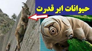 10 تا از حیوانات ابرقدرت جهان
