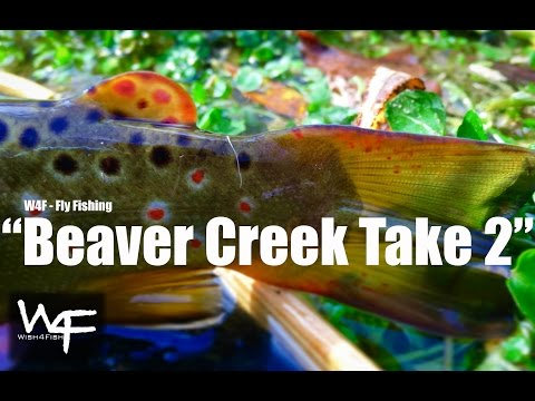 "W4F - Fly Fishing - Small Streams ""Beaver Creek Take 2"""