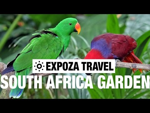 South African Garden Route Vacation Travel Video Guide