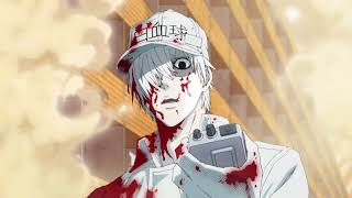 White Blood Cell VS Germs Anime Version :D