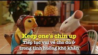 Học tiếng Anh qua phim ảnh: Keep one's chin up - Phim Stuart Little 2