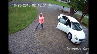 LiveLeak - Porch Pirates Busted