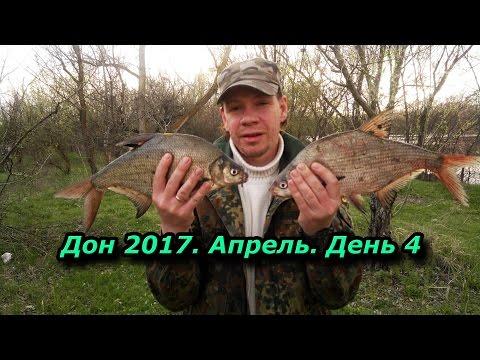 рыбалка в ростовской области форум сальских рыбаков