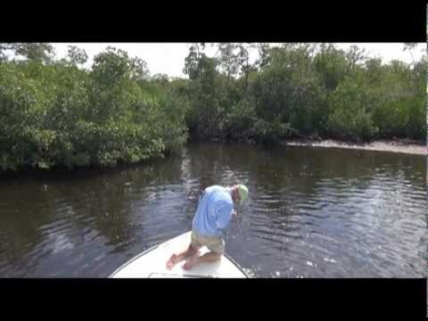 The Snook Whisperer: Sight Fishing With Flies for Snook in Boca Grande, Florida