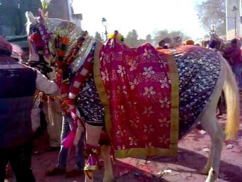 Guru Gobind Singh on Horse Horse of Guru Gobind Singh ji