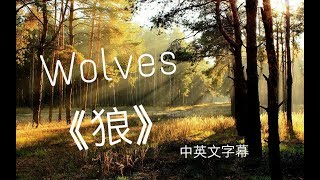 Download Lagu ✔Wolves 《狼》-Selena Gomez, Marshmello 中文字幕✔ Gratis STAFABAND