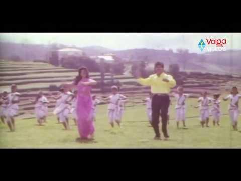 President Gari Pellam Songs - Nuvvu Malleteega - Nagarjuna Akkineni, Meena video