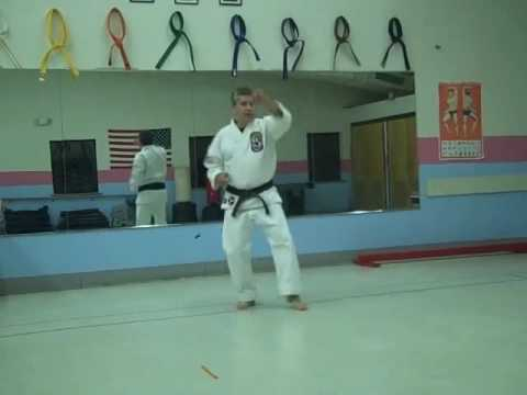 Isshinryu Karate  Fundamentals Chart 1 + 2