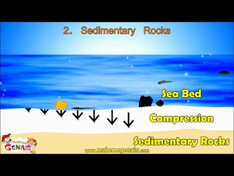 3 Rocks Types Igneous rocks,Sedimentary rocks,Metamorphic rocks for kids