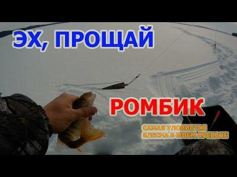 КАКАЯ ЩУКА ЭТА СДЕЛАЛА. Рыба рвет снасти.  Рыбалка, ловим окуня  на Большеокинской переправе