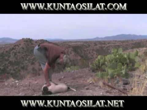 DudeTraining3 combines the KunTao Silat Spine Stretch with beginning Puppy combat training Image 1