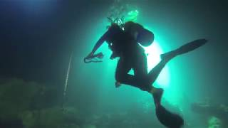 @trinamason takes off regulator & mask while underwater scuba diving Devils den