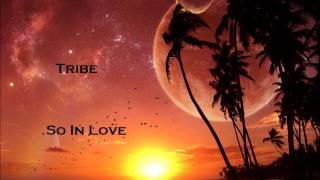 Watch Tribe So In Love video