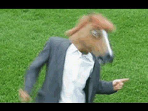 Dancing horse head gif
