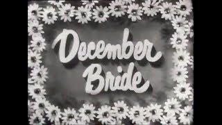 Remembering The Cast From December Bride 1954
