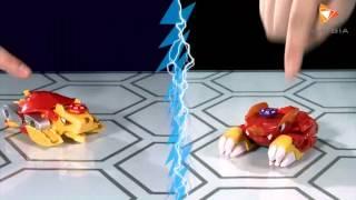 Đồ chơi zinba - hướng dẫn chơi zinba với thẻ bài