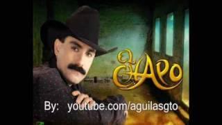 Vídeo 78 de El Chapo De Sinaloa