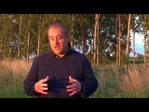 Robbert van den Broeke Predicts Largest Crop Circle Ever in the Netherlands