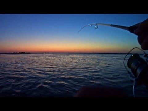 Рыбалка на ночного судака. Злые поклёвки вдоль кустов