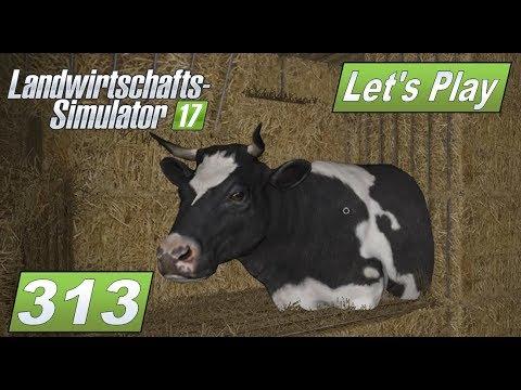 LS17 #313 Erst mal Futter für die Tiere #Lets Play Landwirtschafts Simulator 2017 mod map #deutsch