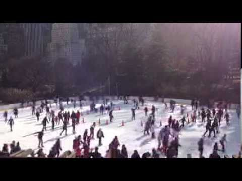 Christmas Holidays New York Sleigh Ride 2014