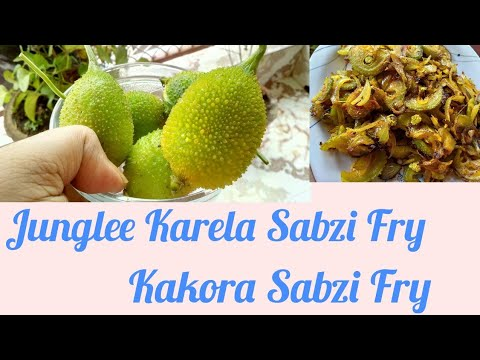 Junglee Karela Sabzi Fry | Spiny gourd Recipe in Hindi | Kakora Fry Recipe