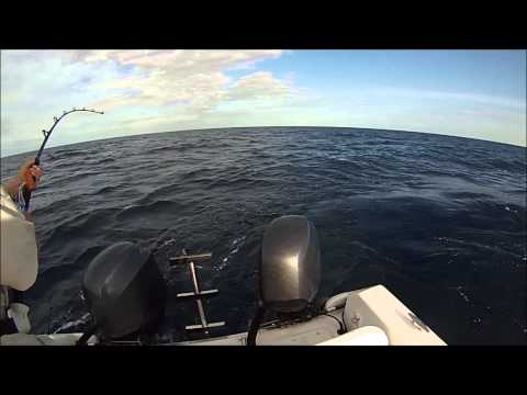 Yellowfin Tuna Fishing 06 22 2014