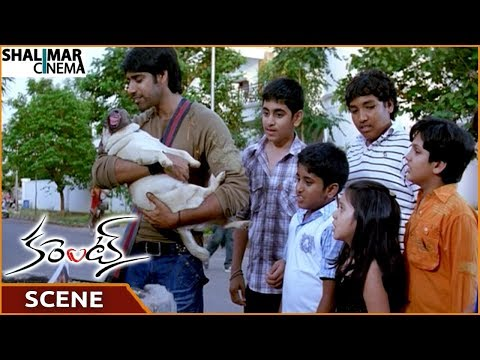 Current Movie || Sushanth Finds The Dog & Gives To Children || Sushanth || Shalimarcinema