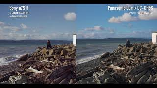 Panasonic Lumix DC-GH5S vs Sony a7S II Log footage comparison