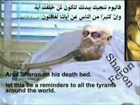 كلمة الشيخ محمد متولي الشعراوي للمجرم شارون