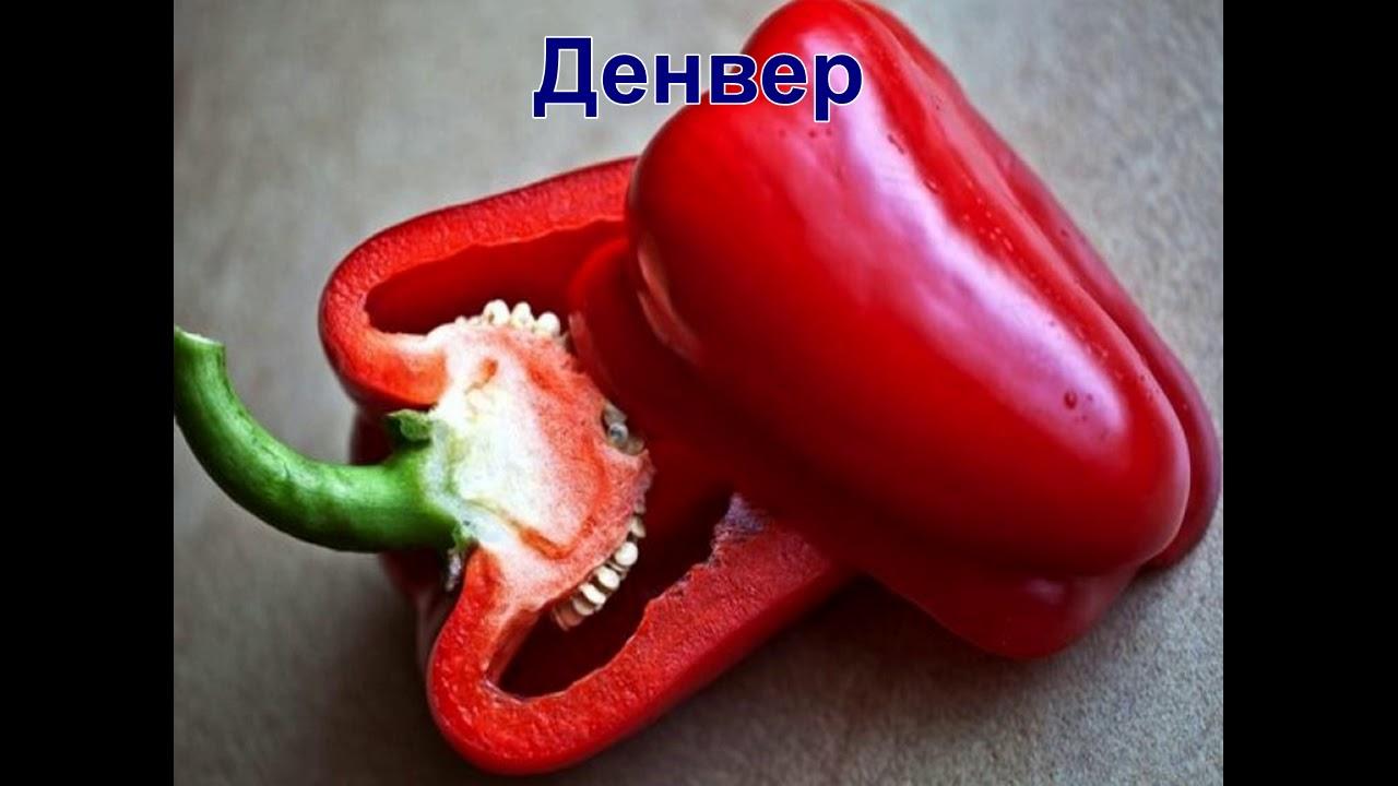Анекдоты Перца Видео