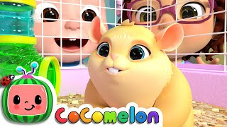 Class Pet Song | CoCoMelon Nursery Rhymes & Kids Songs