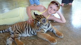 Dasha and tigers