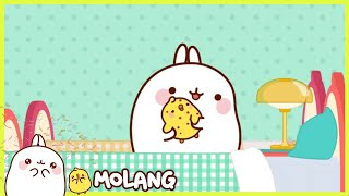 Molang - Chickenpox | Full Molang episodes - Cartoon for kids