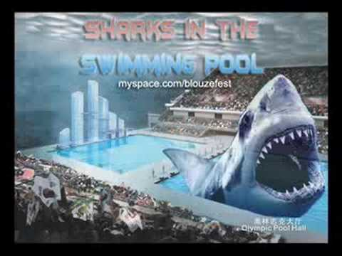 Sharks in the swimming pool youtube for Swimming pool 4 eckig