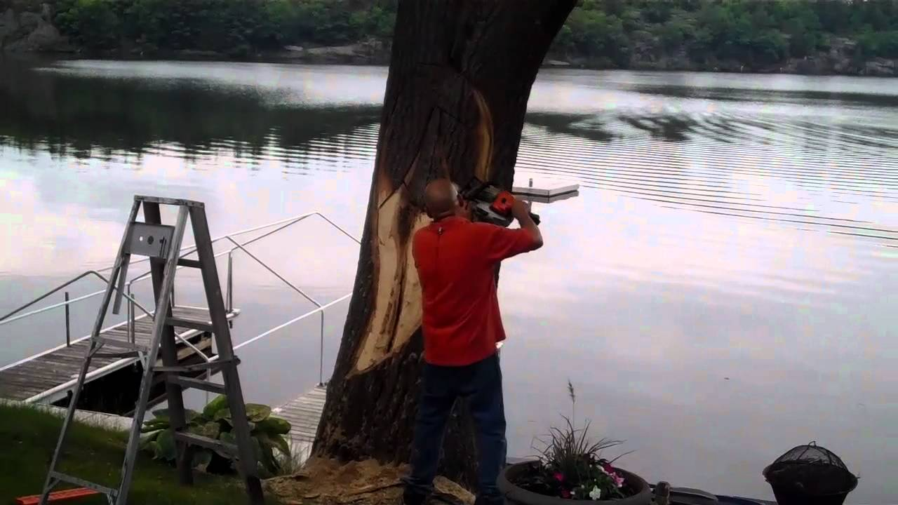 Woodspirit tree gravenhurst ontario by john melo youtube