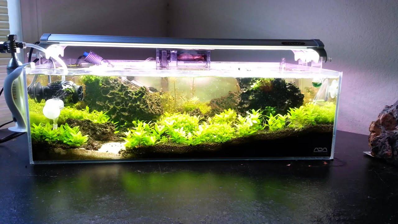 Finnex Fugeray Led Aquarium Light Review