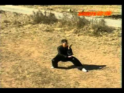 Techniques of Cheng Baguazhang by Liu Jing Ru Image 1