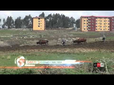 OMN News March 26 , 2015 | Latest Ethiopia News
