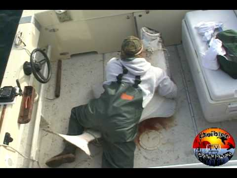 Halibut Fishing with Deibler Outdoors