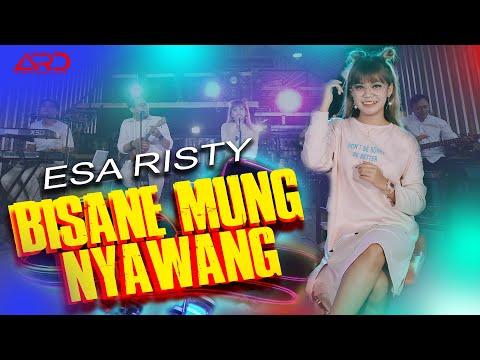 Download Lagu Esa Risty - BISANE MUNG NYAWANG .mp3