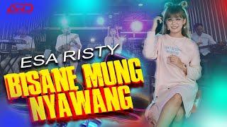 Download lagu Esa Risty - BISANE MUNG NYAWANG ( )