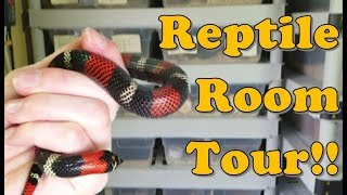 Reptile Room Tour!! Part 1