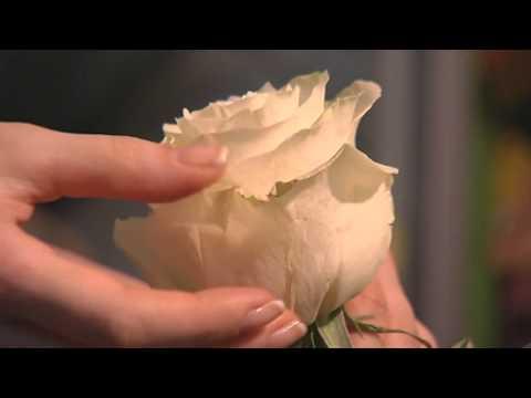 Видео как выбрать цветы