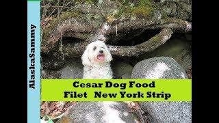 Cesar Filet New York Strip Dog Food