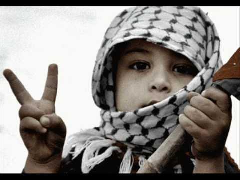Solidarity Kavitha Solidarity Youth Movement Palastine  Jameel Ahmed video