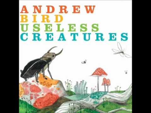 Andrew Bird - Hot Math