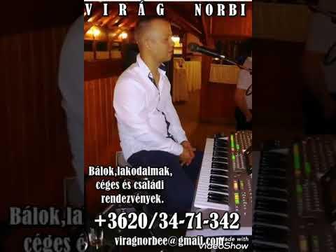 Viràg Norbi - Csepereg az eső - Élőzene